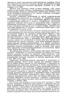 p-29_Page_2